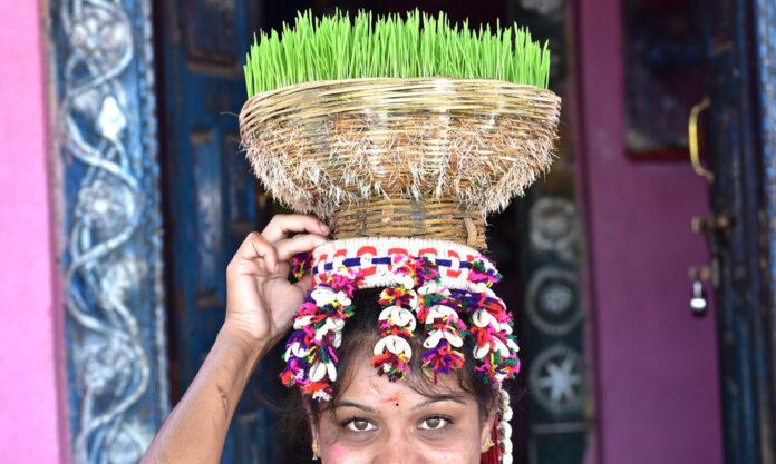 Teej Festival Grandly Celebrated by Tribals